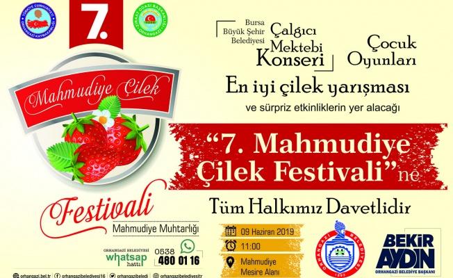 ÇİLEK TADINDA FESTİVAL BAŞLIYOR..