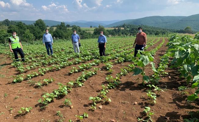 Türkiye'ye örnek olacak tarım hamlesi