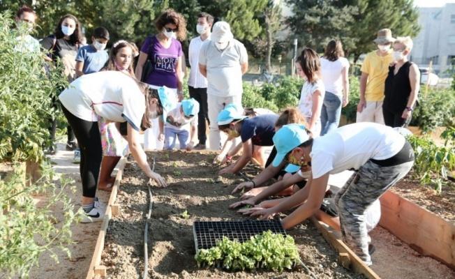 Nilüfer'de çocuklar tarımla tanışıyor