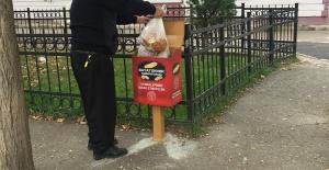 Gürsu'da Sokak Hayvanları İçin Ekmek Toplama Kutuları Oluşturdu.
