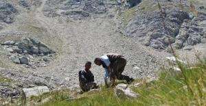 Bursa'da dağlar onlara emanet