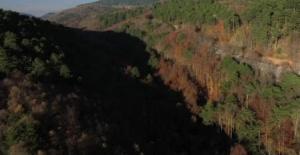 Uludağ'daki sonbahar manzaraları mest etti