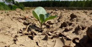 Tarım ihracatçıları iklim değişikliği konusuna odaklanacak