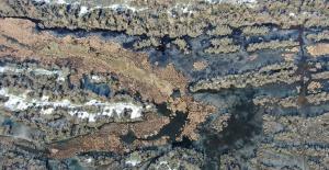 Karacabey longoz ormanları buz tuttu