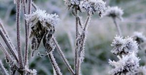 Meteoroloji'den Bursa için don uyarısı