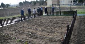Uludağ Üniversitesi personeline organik tarım uygulama eğitimleri başlıyor