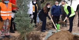 Bursa'da Sağlık Kahramanları Hatıra Ormanı oluşturuldu